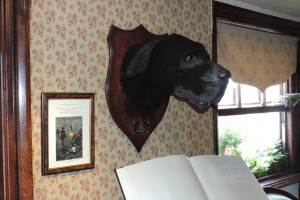 Send in the hounds - it's one large dog head hanging on the wall of the Sherlock Holmes museum