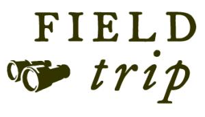 FT-logo-horiz-A-350x-200-300x171