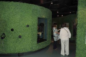 High hedge row displays at Florence Nightingale museum, London